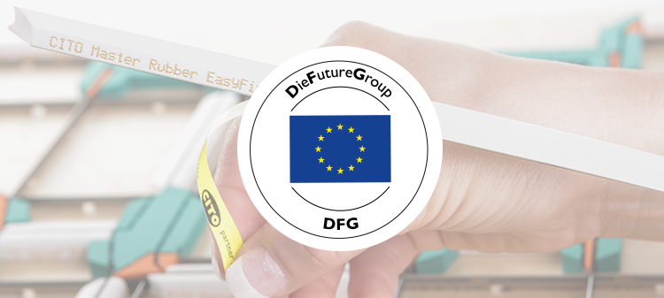 Die Future Group (DFG)